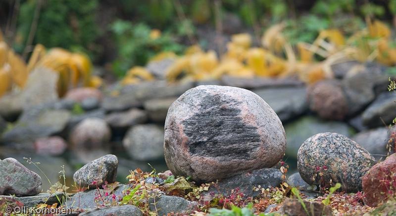 Onko tässäkin kivessä jokin kuva?