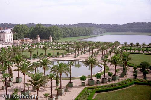 Palm trees, Versailles, park, palmiers, parc.
