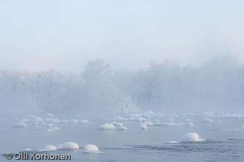 Kuva: Pakkashuurut nousevat jäätyvästä virrasta.