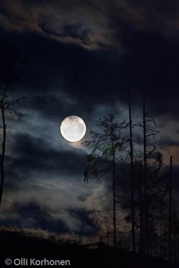 Kuva: Täysikuu synkkänä syysyönä.