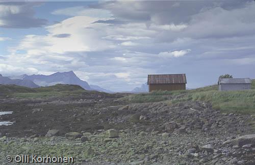 Kuva: Merenrantamaisema. Pohjois-Norja.
