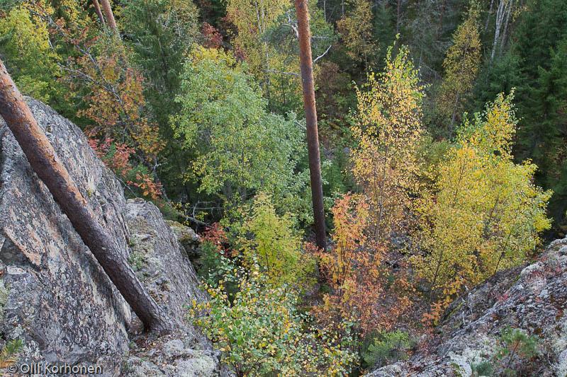 Kalliojyrkänne, Korkeaniemi, Suonenjoki