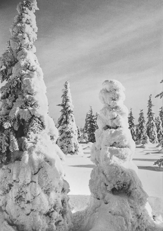 Losovaara, 1960-luku, Valokuvausliike Hynninen