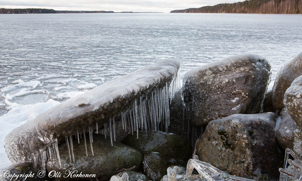 Jääpuikkojen peittämä suuri kivi.