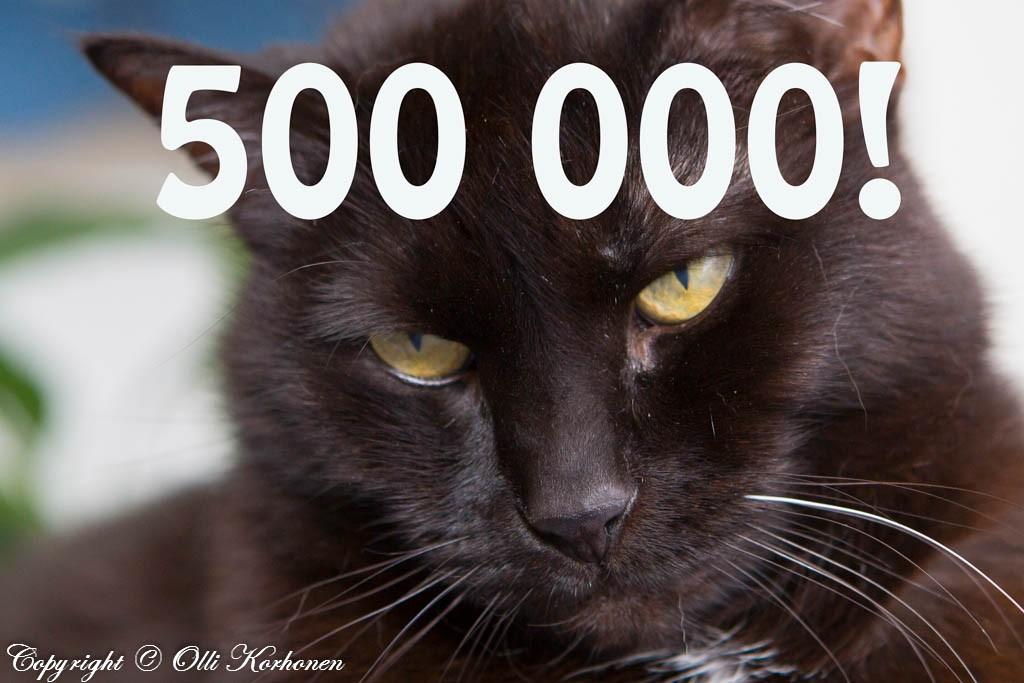 Siiri -kissan kehräystä kuunneltu yli 500000 kertaa!