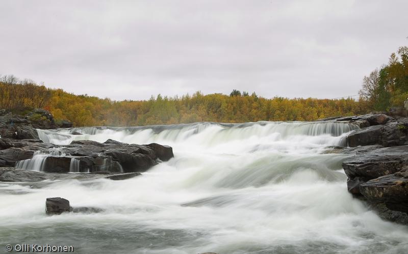 Kuohuva koski, Kolttaköngäs, Näätämöjoki, Norja.
