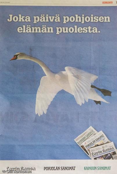 Kyhmyjoutsen on Iltalehden uutisankka.