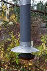 Harakoilta suojattu lintujen ruokinta-automaatti.