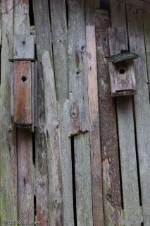 Hylätyn talon autiot linnunpöntöt.