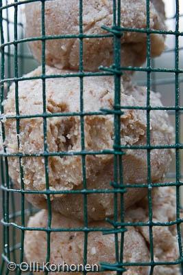 Maapähkinäpalloja ruokinta-automaatissa.