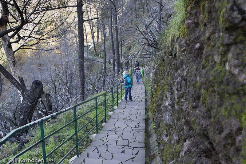 Vuoristopolku näköalapaikalle, Eira do Serrado, Madeira.