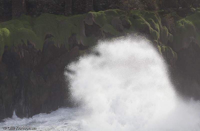 Gorilla, hahmo rantatyrskyissä, Porto Moniz, Madeira.