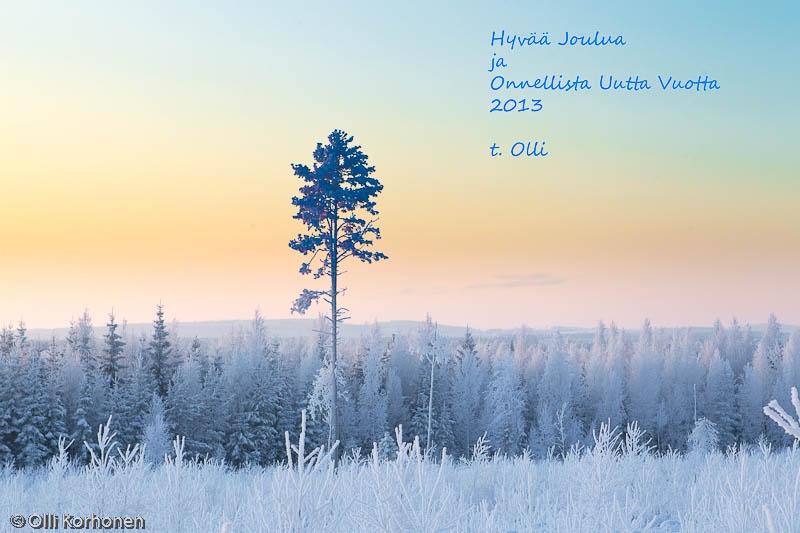 Kuurainen talvimaisema iltaruskon aikaan, Joulukortti 2012.
