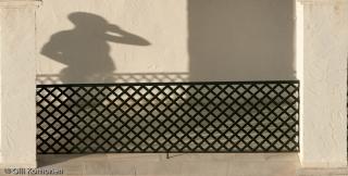 miehen-varjokuva-2011-8582