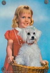 Lapsi ja villakoira, hellyttävä postikortti.