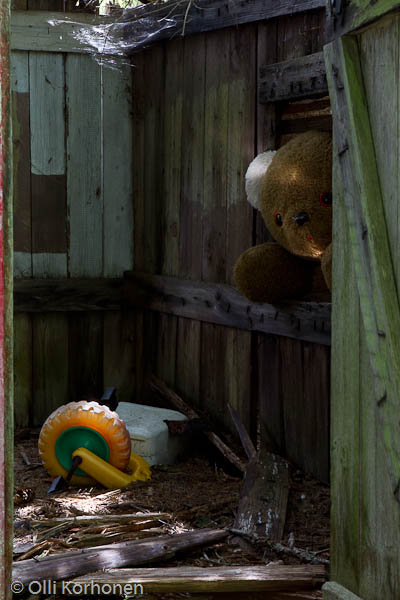 abandoned-teddy-bear-2012-6521-size-3189-x-4784