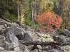 Kallio-Kourujärven rantalohkareikko.