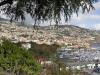 Näkymä yli sataman, Funchal, Madeira.