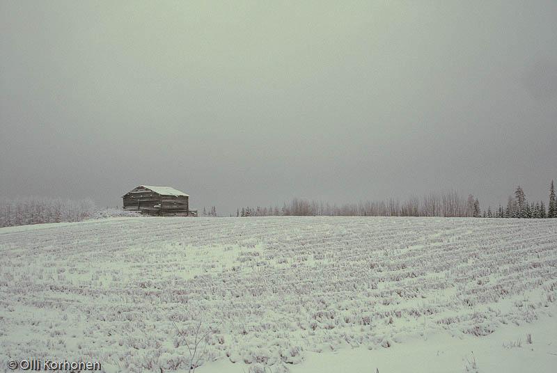 Perinnemaisema, Kierroksen talon pellot Multialla.