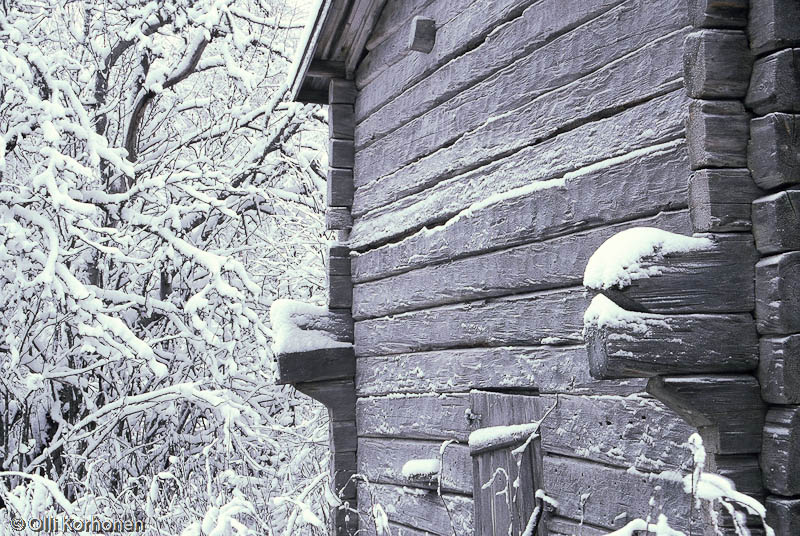 Vanhan hirsirakenteisen riihen seinä Multian Väätäiskylällä.