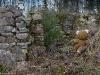 Kuva 26: Hylätty Nalle sortuneen kivinavetan raunioilla.