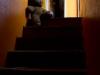 Hylätty Nalle ja aution rintamamiestalon yläkerran oranssi portaikko.