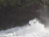 Karhu, hahmo rantatyrskyissä, Porto Moniz, Madeira.