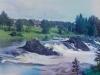 Suunujoki