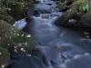 Tumma puro kuohuu hämärän laskeuduttua.