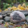 Hahmo kivessä.