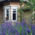 Hylätty Nalle venäjänvallanaikaisessa talossa.
