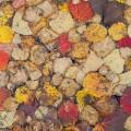 Ruskan värittämiä lehtiä, Talaskangas