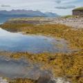 Vuonon rannalla Norjassa.