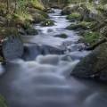 Tumma puro kuohuu pehmeästi
