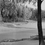 Kajaani,Kyynäpäänniemi, Kajaaninjoki, 1960-luku, valokuvausliike Hynninen