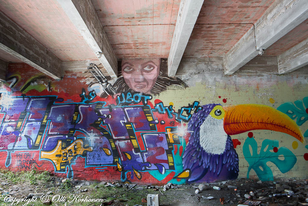 graffiti,muraali,katutaide,street art,kajaani,karanka,refida